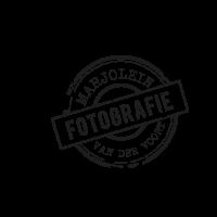 Logo-marjolein-vdvoort-fotografie
